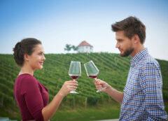 Degustazione di vini in Slovenia