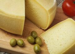 degustazione di formaggi in Slovenia